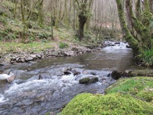 Río Agüeira en Pumares