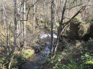 Ruta de la Cascada de la Seimeira