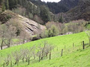 Río Agüeira en Ferreira