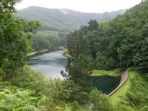 Embalse de Domico (Navarra)