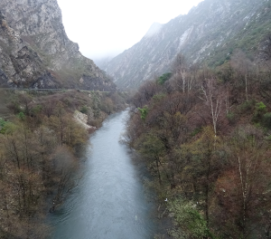 Embalse de La Barca (Asturias)