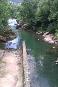 El río Pas aguas abajo de la Estación