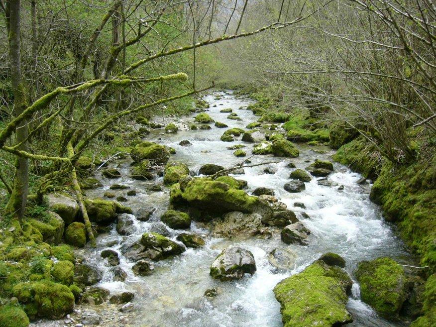 Río Duje